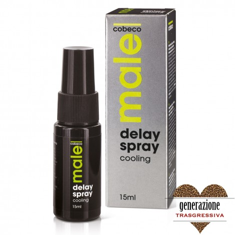 Sexy Shop MALE DELAY SPRAY COOLING 15 ML